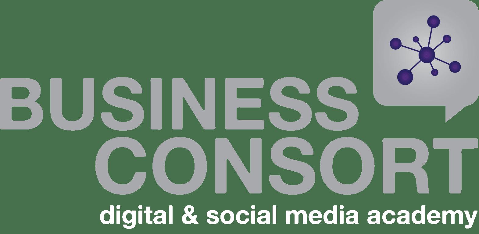 Business Consort Digital & Social Media Academy